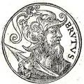 Brutus Marsius (CZ1)