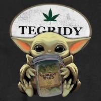 Baby Yoda (US1)