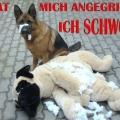ichnich3 (DE1)