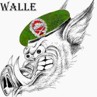Walle (DE1)
