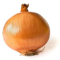 Onion God