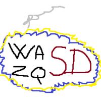 wasdzqsd (FR1)