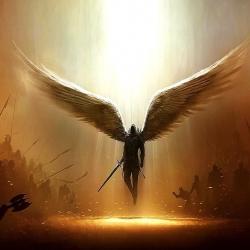 angelcorlux#6827