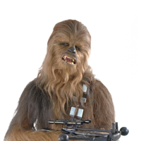BlazingWookie