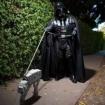 Vinny_Vader_Vedi