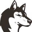 spacewolf90