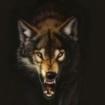 Fenwolf78