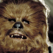 Chewie_says_Aaarww