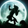 NightWolfman