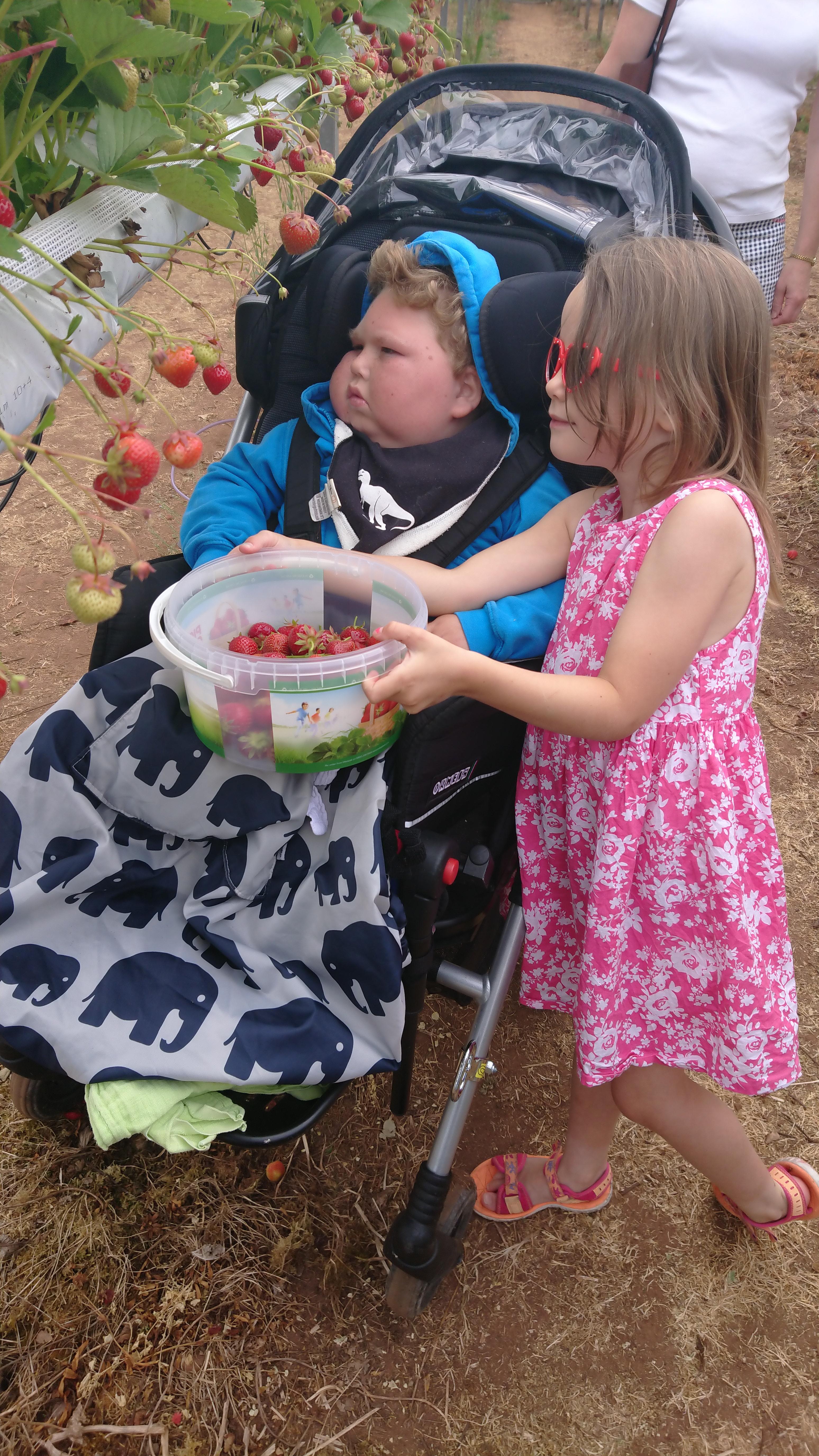 Benjamin and his sister picking strawberries