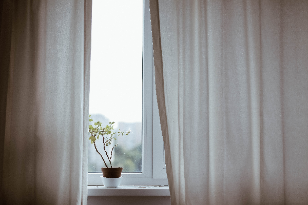 Curtains partially drawn across a window with a plant on the windowsill.