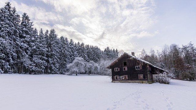 snowy scene of a house in a forest