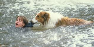 Lassie rescuing an innocent child from a strong river current