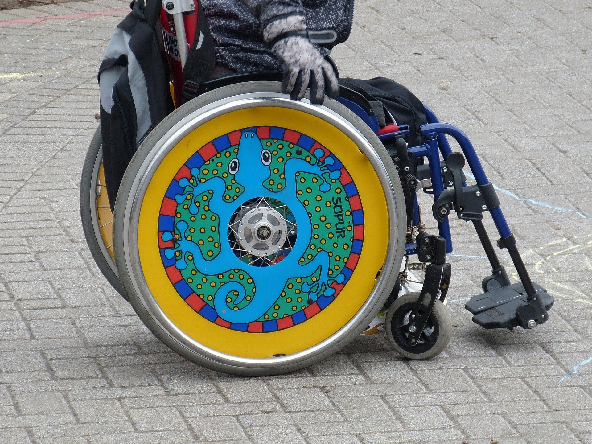 Photo of wheelchair with colourful design of a lizard on the wheel