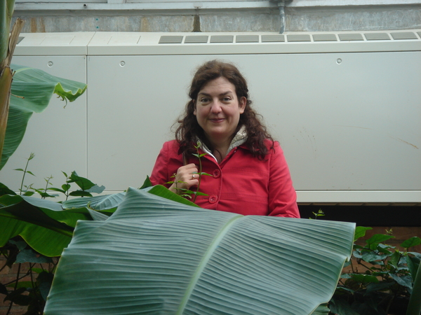 Ruth sat down in a red raincoat she has big green leaves in front of her