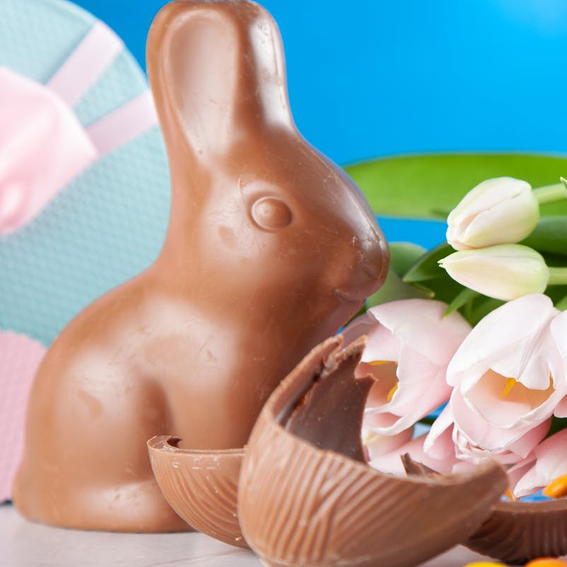 chocolate easter egg bunny and some flowers