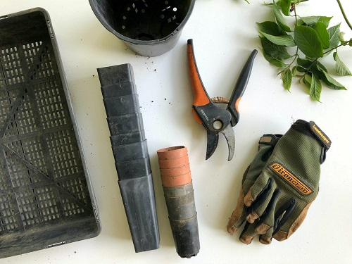 A layout of gardening tools including secateurs and gloves