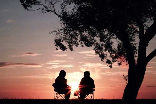 silhouette of two people sitting on a chair underneath a tree