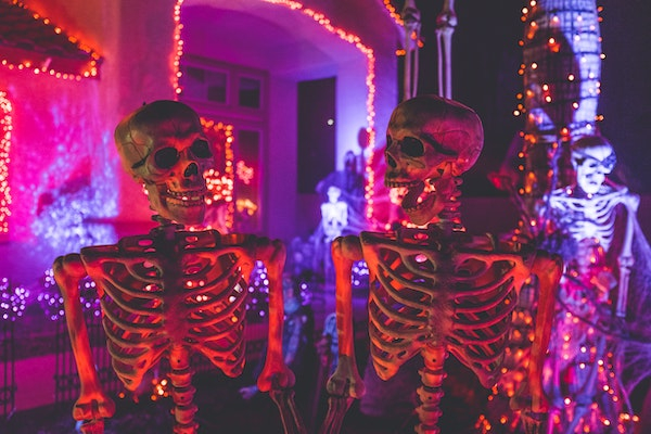 photo of skeletons in a spookily lit room