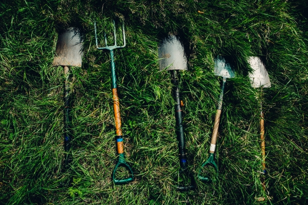 Gardening tools put out on the grass