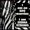 zebra_warrior