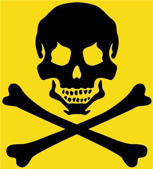 /members/images/194759/Gallery/PirateSkullImageYellow.jpg