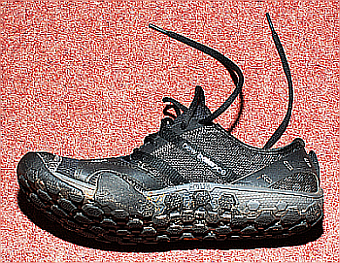 /members/images/493151/Gallery/shoe.png