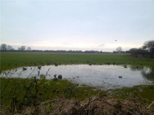 /members/images/645234/Gallery/New_Lake_in_Kempsford.JPG