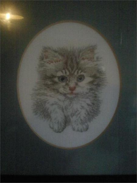 /members/images/88814/Gallery/Needlepoint_Cat.jpg