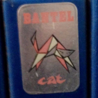 bantel_cat
