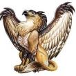 Griffin25833