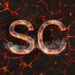 scrappy-_-coco0