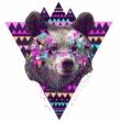Bear_Rux