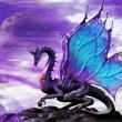 Dragon05061993