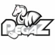 pegaz_CNP