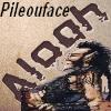 pilouface02