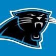 PantherSkunk