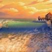 Surfcitygal