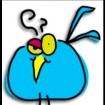 bebadbirds