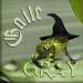 Gaile Gray.6029