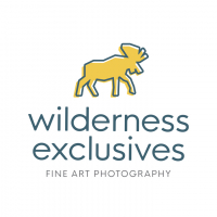 WildernessExclusives