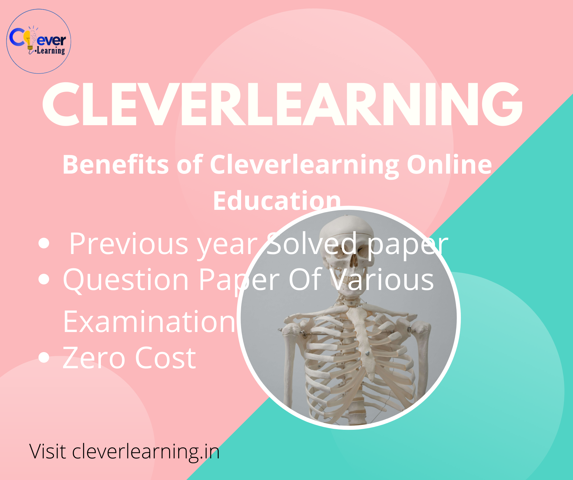 cleverlearning startup nation images.png