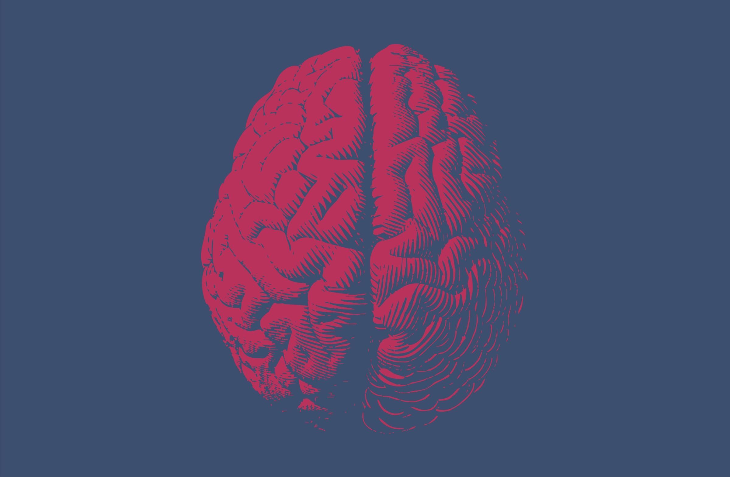brain_mental_health_illustration_istock_jolygon_0.jpg