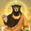 buddhabear