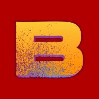 basvision