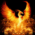The_Great_Phoenix
