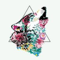 Wolflower