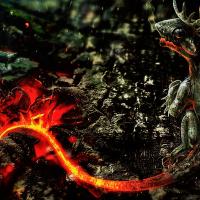 Samurai Salamander