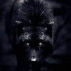 manahound