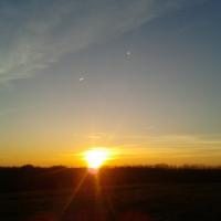 sunny_58